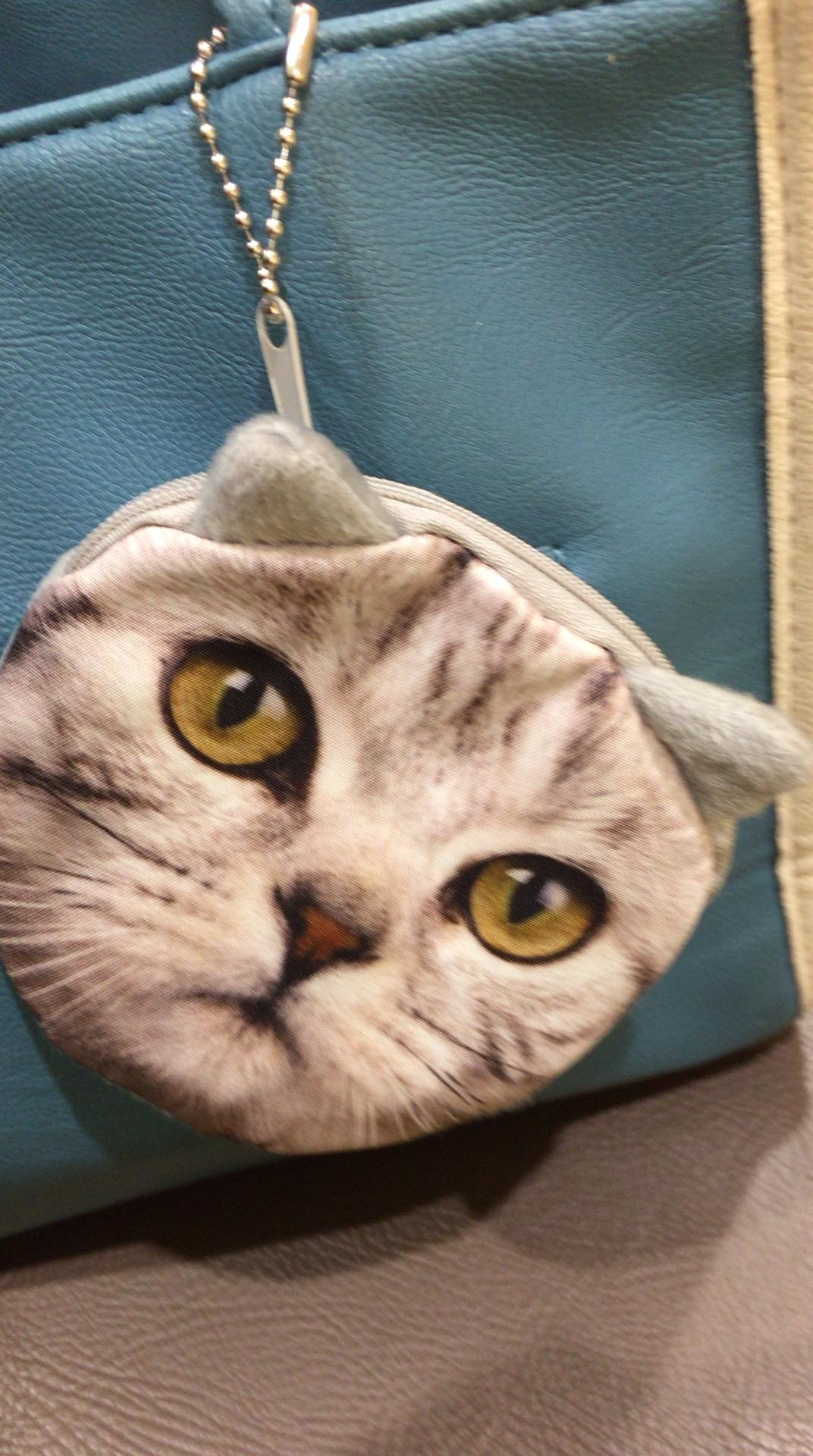 フェリシモの猫部とキャンドゥの猫ポーチ対決猫、ネコ、やっぱりねこが好き