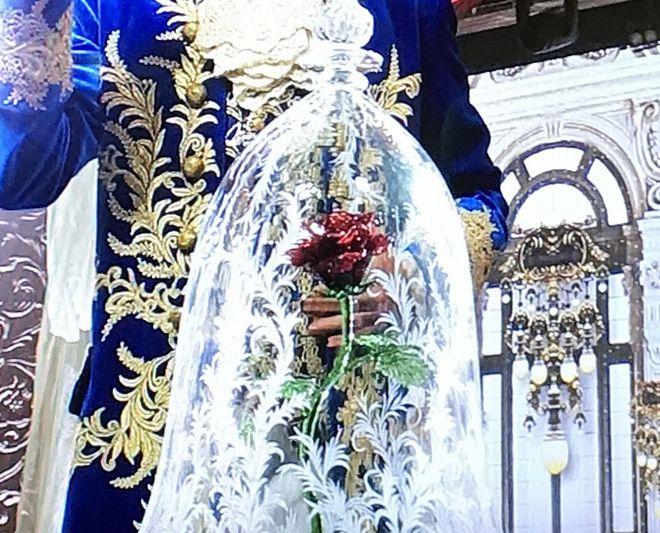 フジテレビ「FNSうたの夏まつり」で日比谷花壇の『美女と野獣』ガラスドームも出演